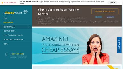 Cheap essays online reviews