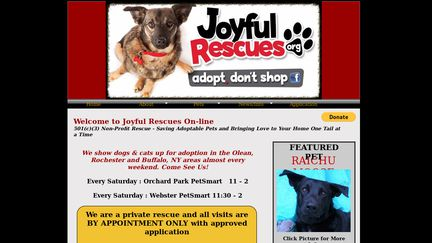 Joyful Rescues org Reviews - 1 Review of Joyfulrescues org
