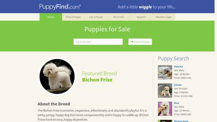 PuppyFind com Reviews - 23 Reviews of Puppyfind com   Sitejabber